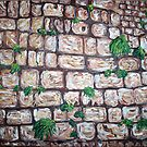 """""""Kotel"""" by Adela Camille Sutton"""