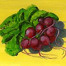 A Cluster of Red, Ripe Radishes by bernzweig