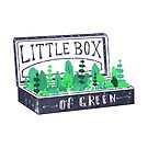Lil Box of Green by Fil Gouvea