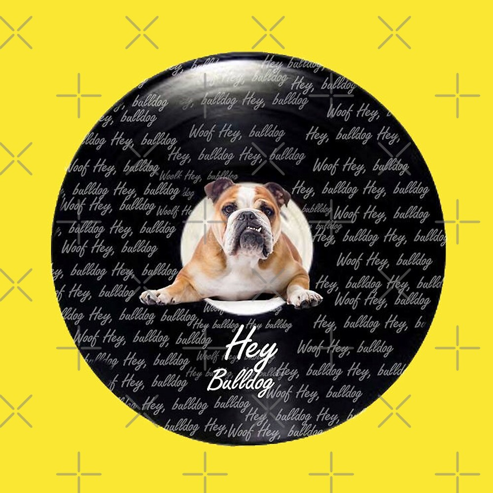 Hey Bulldog!  by purelifephotoss