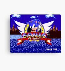 1991 Sonic Canvas Print