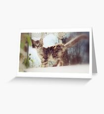 Teaspoon Greeting Card