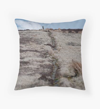 An Ancient Trod Way on Lealholm Moor Throw Pillow