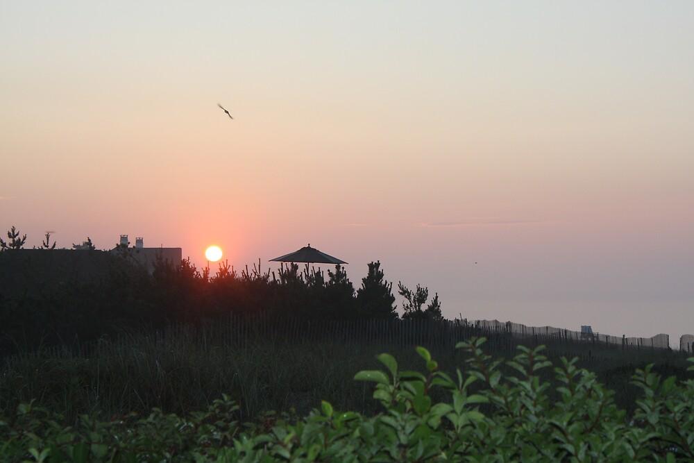 Hampton sunrise by sarastu