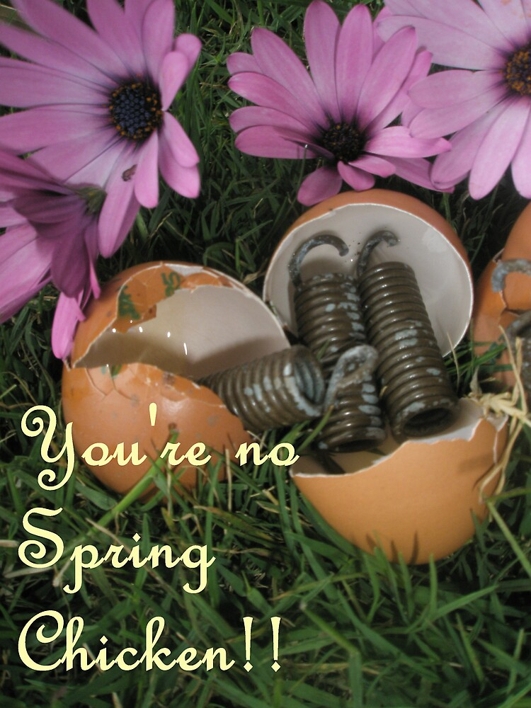 You're no spring chicken!! by Melissa Park