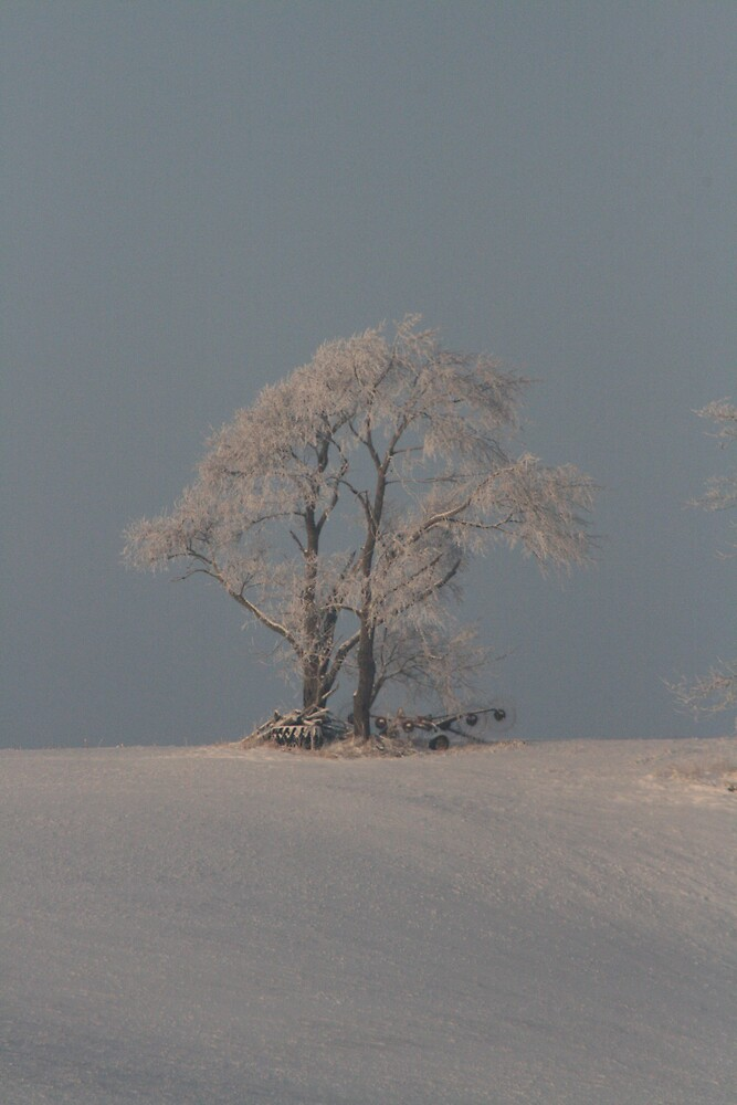 Alone in the cold by Rick  McFarland