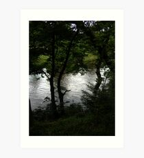 Reflecting water through silhouetted trees Art Print