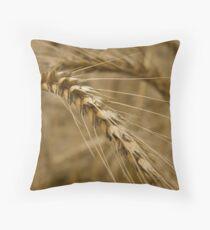 Wheat stalk. Throw Pillow