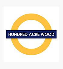 Next Stop, Hundred Acre Wood Photographic Print