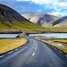 The road to Iceland by Adam North