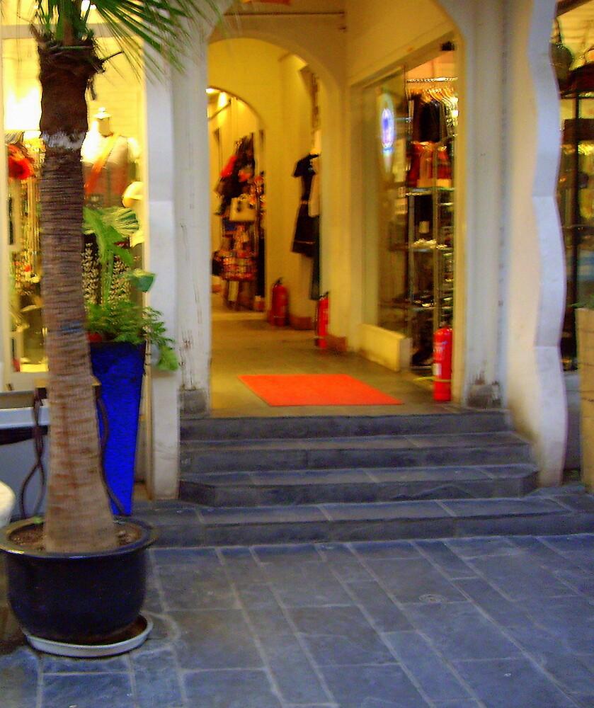 """Shopping Alley . ."" by lurline"