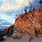 Tathra Beach by Mette  Spange
