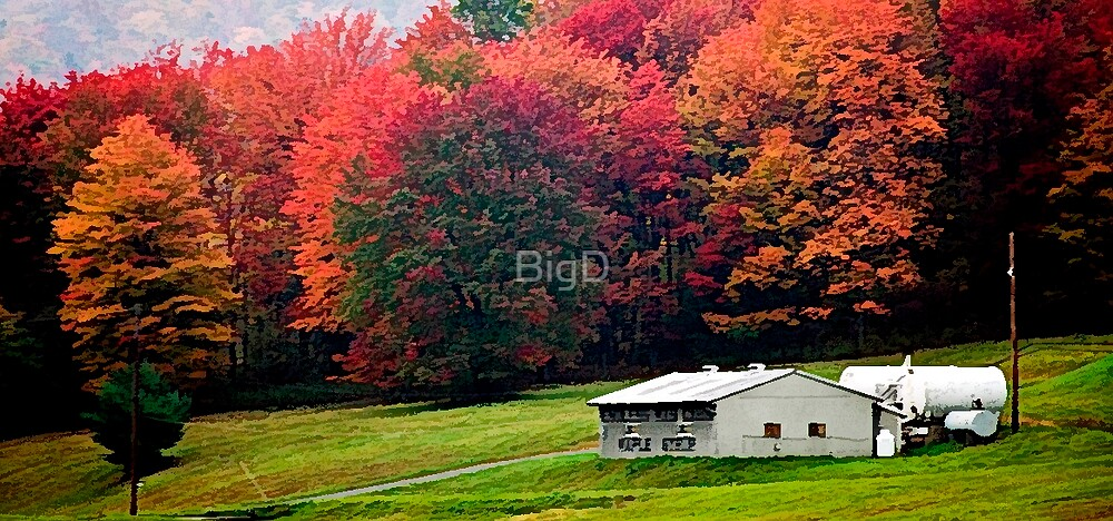 Sugar Cabin by BigD
