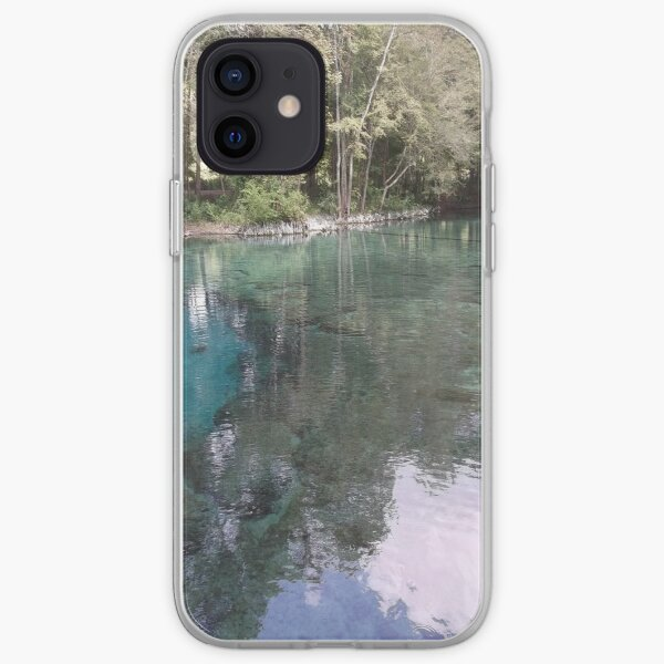The Amazingly Beautiful Ginny Springs iPhone Soft Case