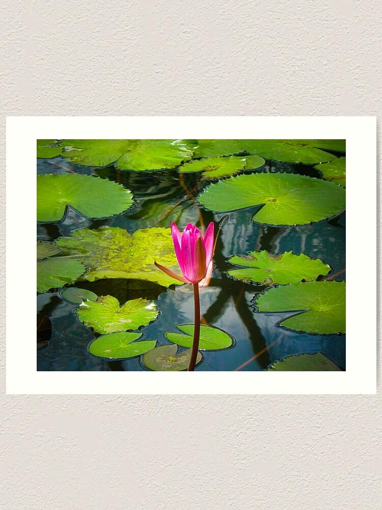 Alternate view of The Pond Art Print