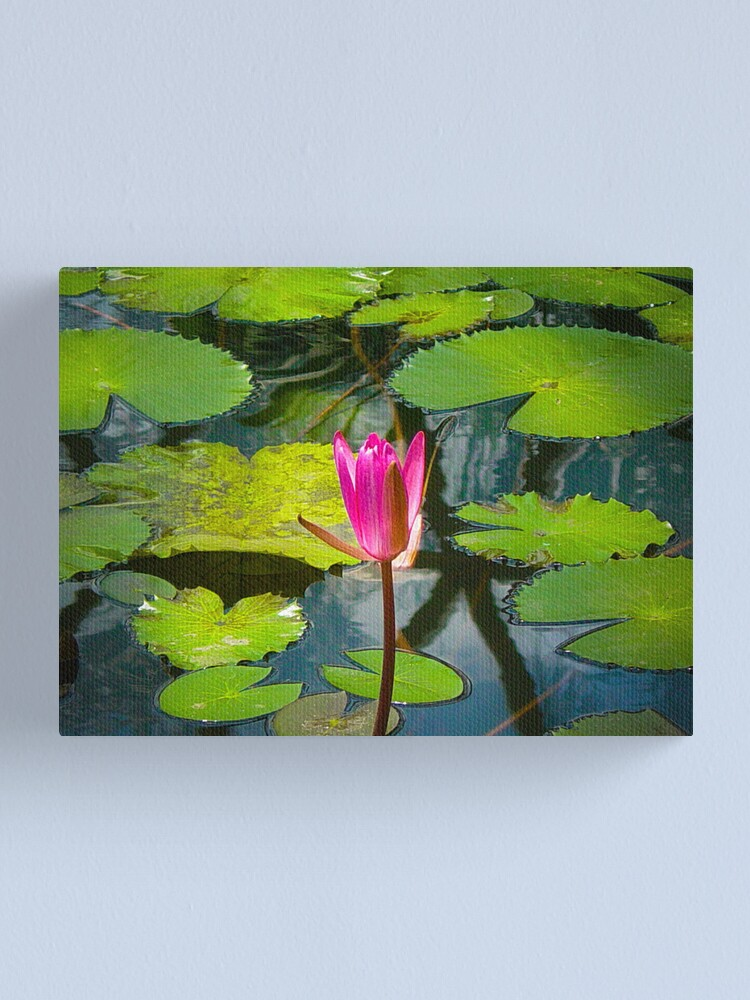 Alternate view of The Pond Canvas Print