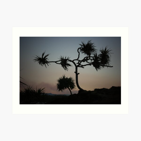 Dark Wind Art Print