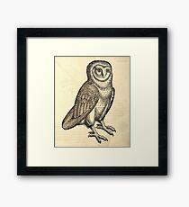 Antique Barn Owl Framed Print