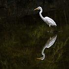 Wade in the Water by Celeste Mookherjee