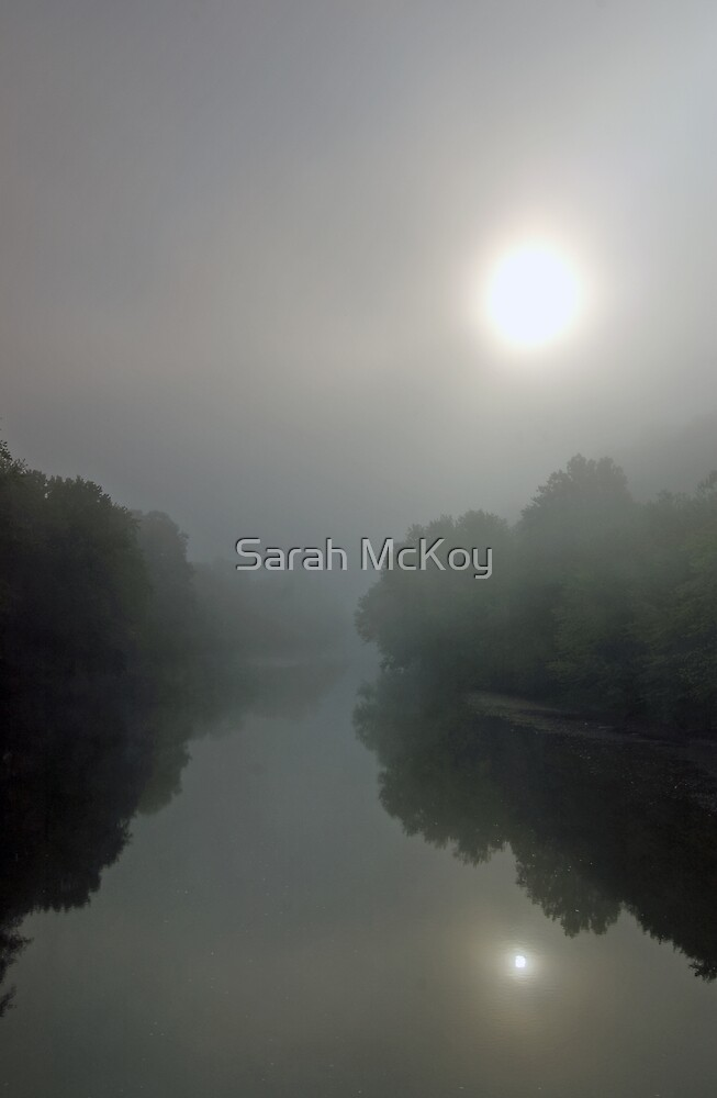 Sun in Mist by Sarah McKoy