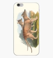 Animals Of Australia The Tasmanian Tiger Or Thylacine iPhone Case