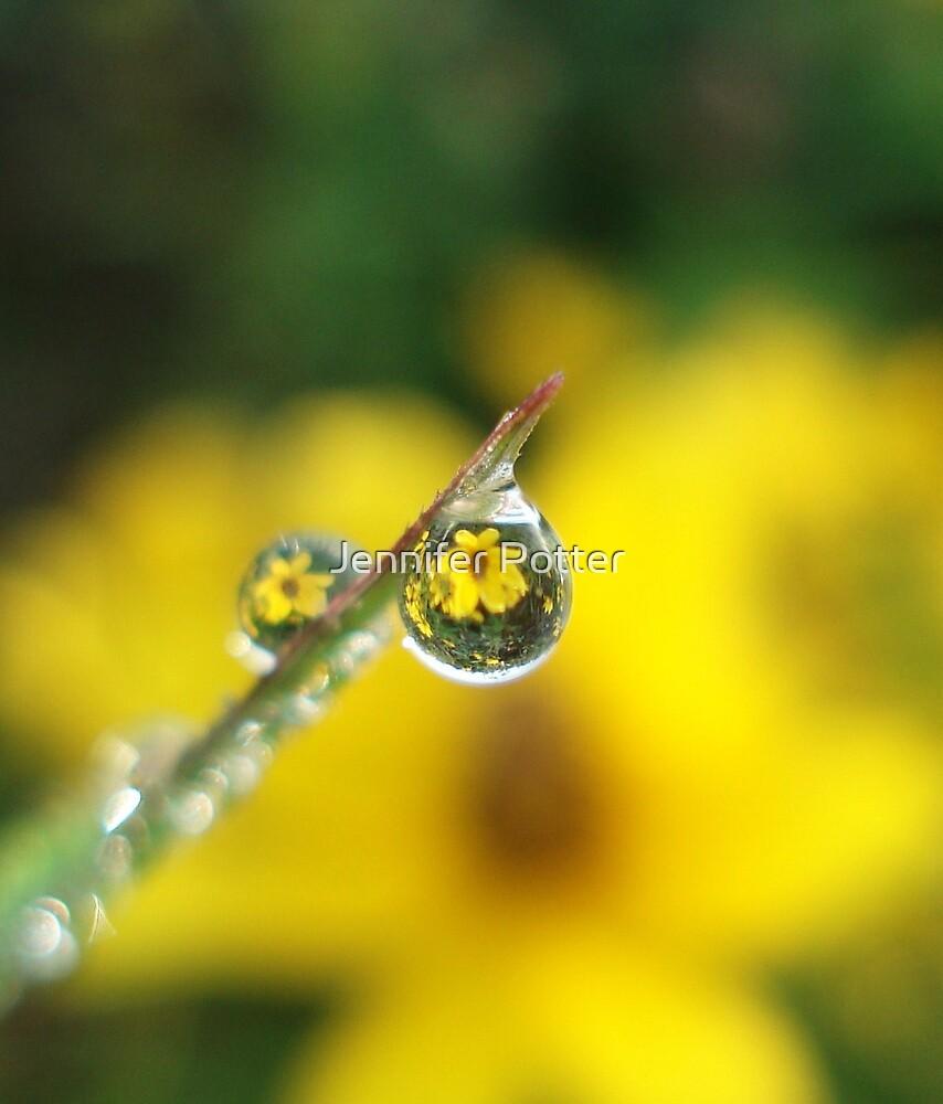 Wildflower Dew by Jennifer Potter