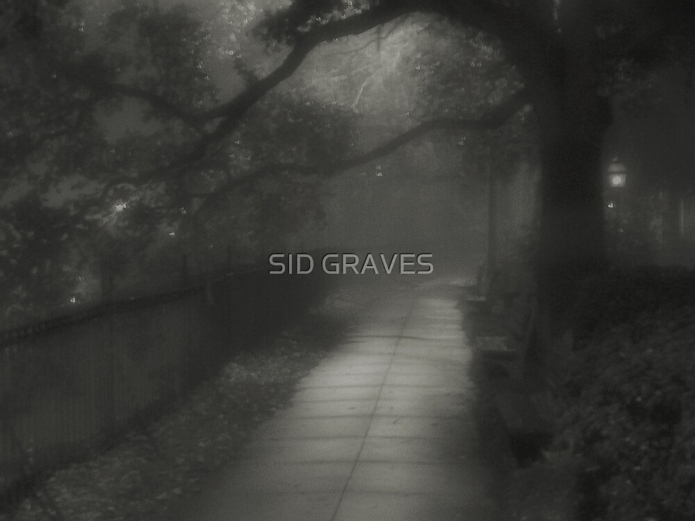 """RIPPED NIGHT"" by SID GRAVES"