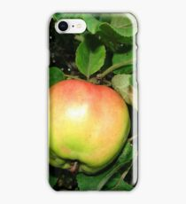 Apple on the branch iPhone Case/Skin