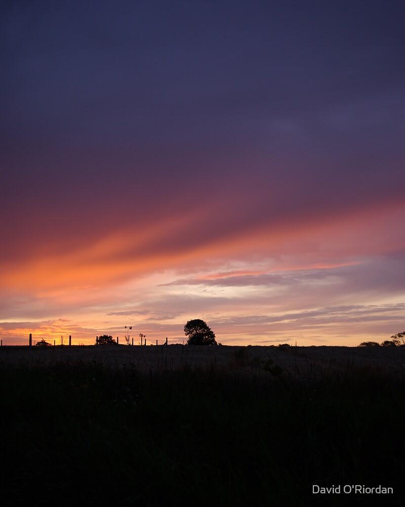 Mornings Colour by David O'Riordan