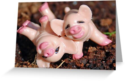 Makin' Bacon by Judy Yanke Fritzges