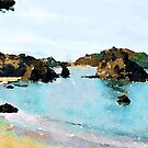 Trinidad Beach by Angela Treat Lyon