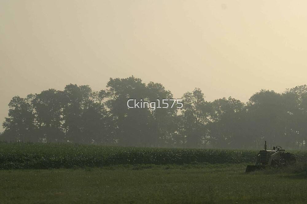 Farm and Fog by Cking1575