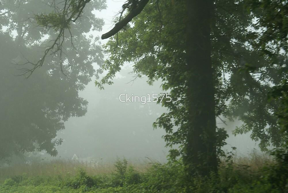 Fog 3 by Cking1575