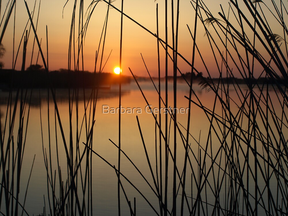 Silent Sunrise by Barbara Gerstner