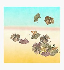 Autumn leaves.... Photographic Print