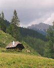 Alpine Cottage by wolftinz