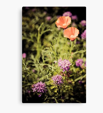 flowery sickle Canvas Print