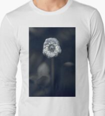 An old-world moment in the monochrome garden T-Shirt