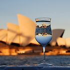 Glass IV, or Opera on the Rocks by andreisky