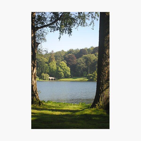 Stourhead Gardens Photographic Print