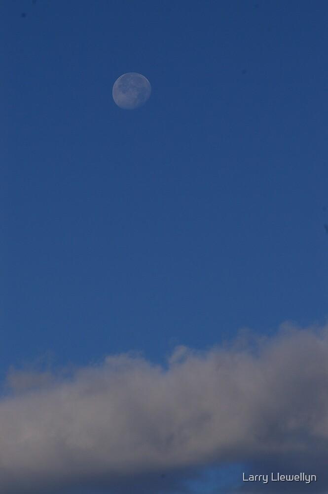 A Morning Moon... by Larry Llewellyn