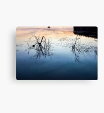 Reflect on reflection Canvas Print