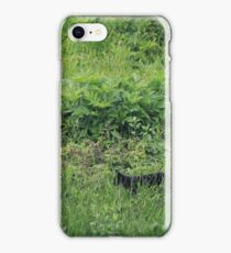 Black cat and butterfly iPhone Case/Skin