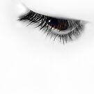 The Eye by Sue  Cullumber