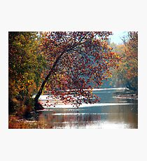 Tranquil Serenity Photographic Print