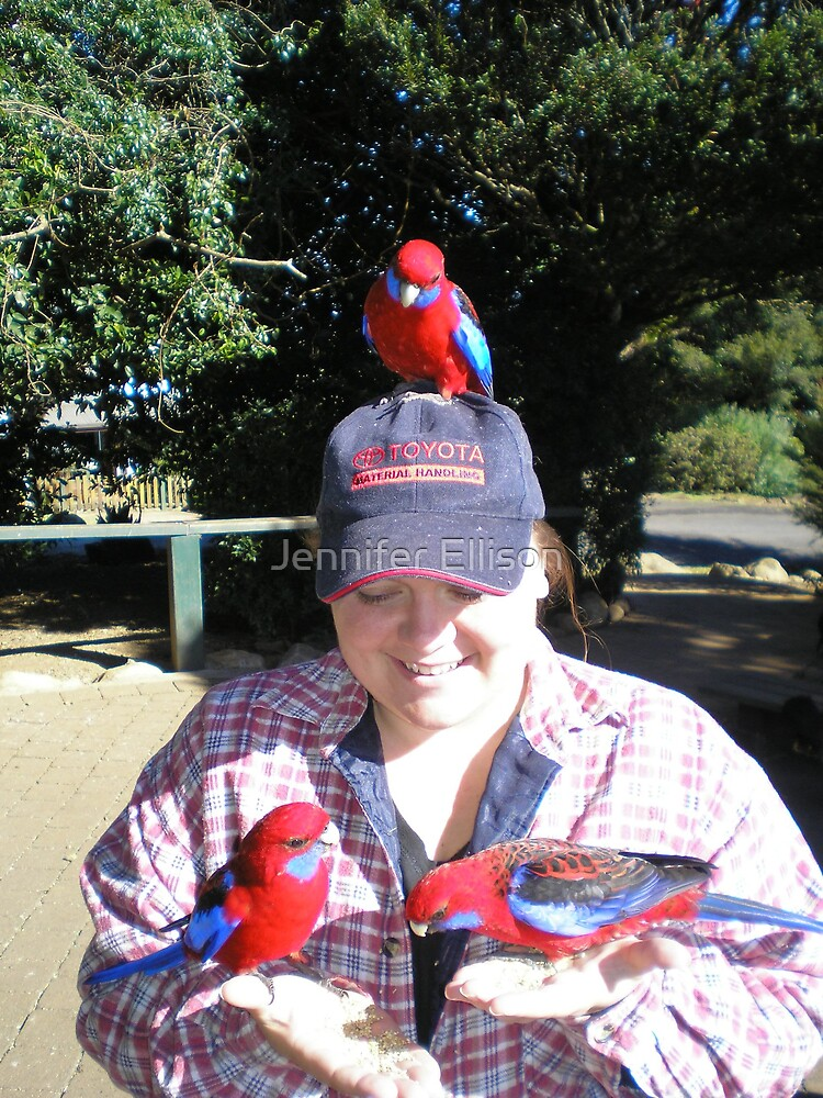 just me and the birds by Jennifer Ellison