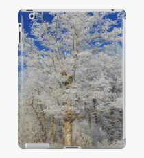 Frost on Rural Trees iPad Case/Skin