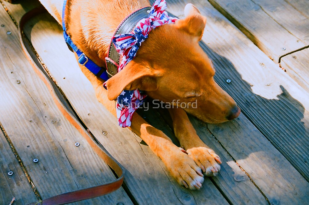Tired Roxie by Nancy Stafford