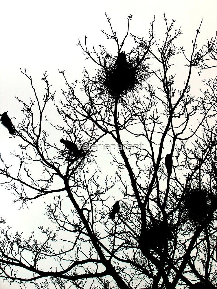 Crow's Nest by valerieparent
