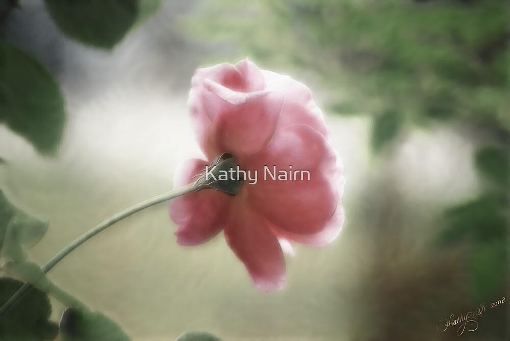 Pink by Kathy Nairn